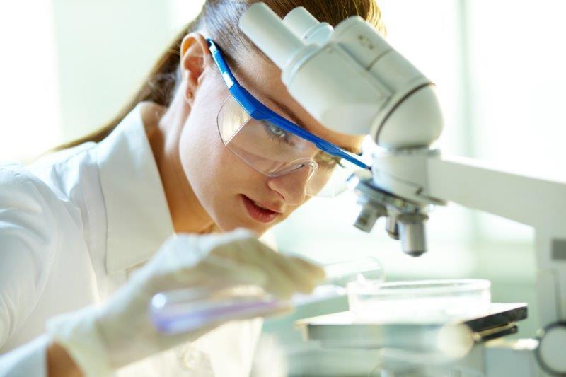 Komórki macierzyste otwierają nowe możliwości w medycynie